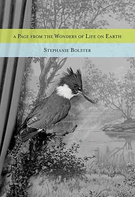 A Page from the Wonders of Life on Earth - Bolster, Stephanie