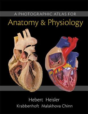 A Photographic Atlas for Anatomy & Physiology - Hebert, Nora, and Heisler, Ruth, and Chinn, Jett