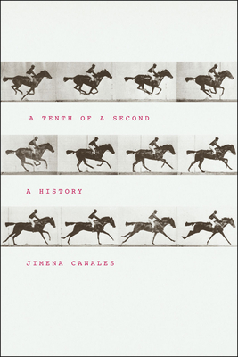 A Tenth of a Second: A History - Canales, Jimena