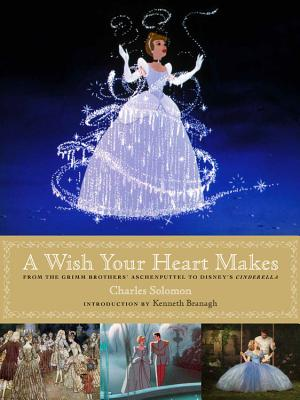A Wish Your Heart Makes: From the Grimm Brothers' Aschenputtel to Disney's Cinderella - Solomon, Charles