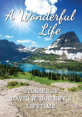 A Wonderful Life: Stories of David W. Downey's Lifetime - Downey, David W
