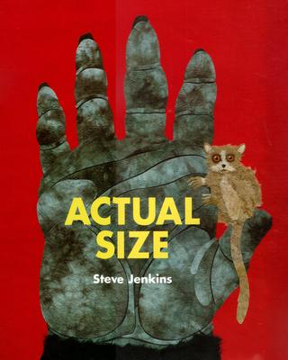 Actual Size - Jenkins, Steve