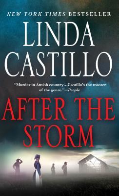 After the Storm - Castillo, Linda