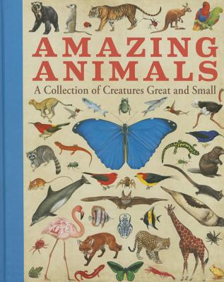Amazing Animals: A Collection of Creatures Great and Small - Sterling Children's
