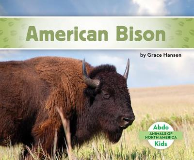 American Bison - Hansen, Grace