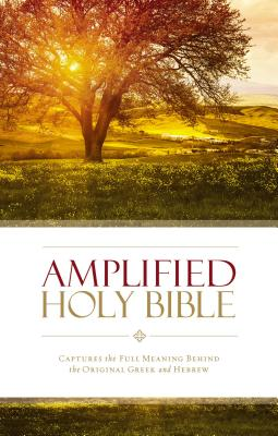 Amplified Bible-Am: Captures the Full Meaning Behind the Original Greek and Hebrew - Zondervan