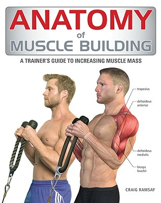 Anatomy of Muscle Building: A Trainer's Guide to Increasing Muscle Mass - Ramsay, Craig