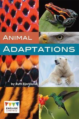Animal Adaptations - Bjorklund, Ruth