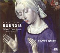 Antoine Busnois: Missa O Crux lignum; Motets; Chansons - Angus Smith (tenor); Donald Greig (baritone); Mark Dobell (tenor); Orlando Consort; Robert Harre-Jones (counter tenor)