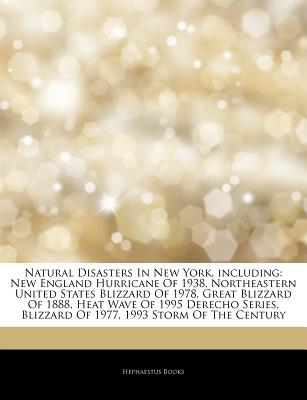 Articles on Natural Disasters in New York, Including: New England Hurricane of 1938, Northeastern United States Blizzard of 1978, Great Blizzard of 1888, Heat Wave of 1995 Derecho Series, Blizzard of 1977, 1993 Storm of the Century - Hephaestus Books, and Books, Hephaestus