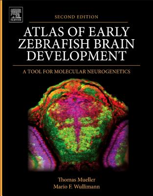 Atlas of Early Zebrafish Brain Development: A Tool for Molecular Neurogenetics - Mueller, Thomas, and Wullimann, Mario F.