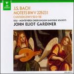 Bach: Motets, BWV 225-231