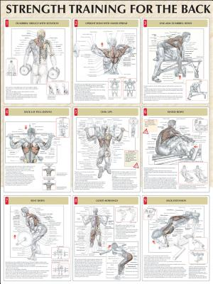 Strength Training Anatomy Poster Series: Frederic Delavier