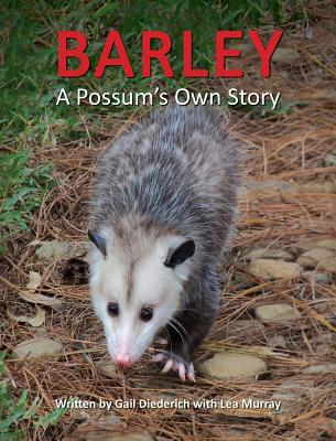 Barley, a Possum's Own Story - Diederich, Gail, and Murray, Lea