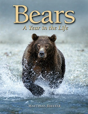 Bears: A Year in the Life - Breiter, Matthias