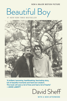 Beautiful Boy (Tie-In): A Father's Journey Through His Son's Addiction - Sheff, David