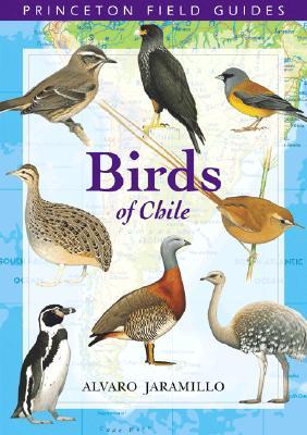 Birds of Chile - Jaramillo, Alvaro