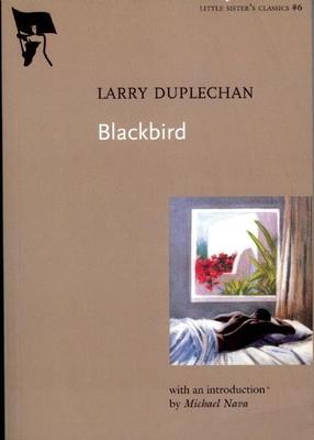 Blackbird - Duplechan, Larry