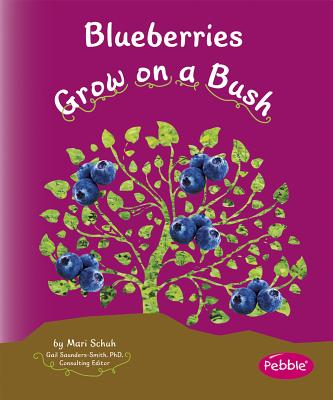 Blueberries Grow on a Bush -