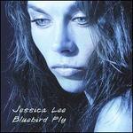 Bluebird Fly