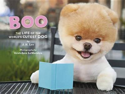 Boo the Dog - Lee, J. H.
