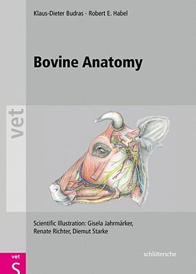 Bovine Anatomy: An Illustrated Text - Budras, Klaus Dieter
