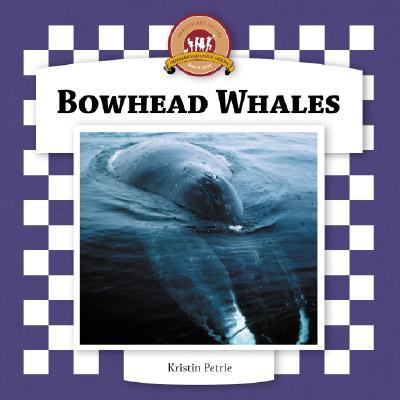 Bowhead Whales - Petrie, Kristin