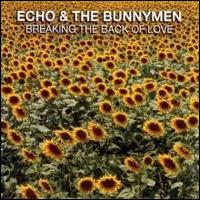 Breaking the Back of Love - Echo & the Bunnymen