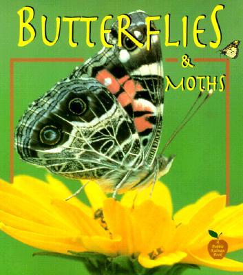 Butterflies and Moths - Kalman, Bobbie, and Everts, Tammy