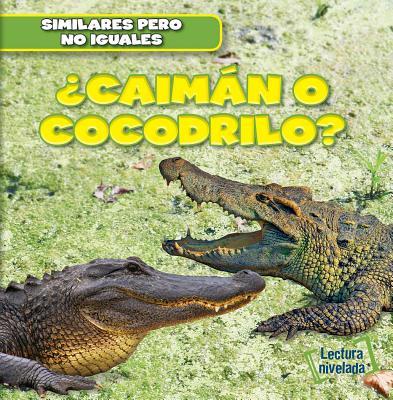 Caiman O Cocodrilo? (Alligator or Crocodile?) - Ryndak, Rob