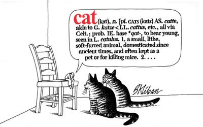 Cat - Kliban, B