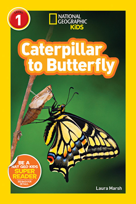 Caterpillar to Butterfly - Marsh, Laura