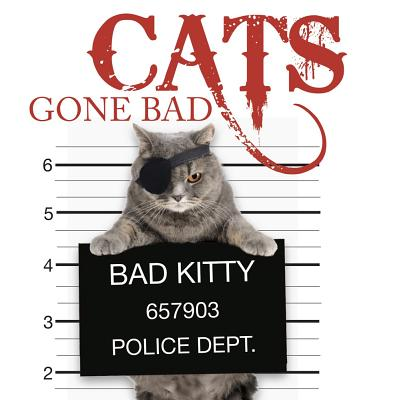 Cats Gone Bad - Scratching, Kat