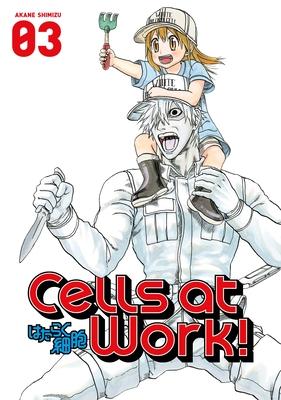 Cells At Work! 3 - Shimizu, Akane