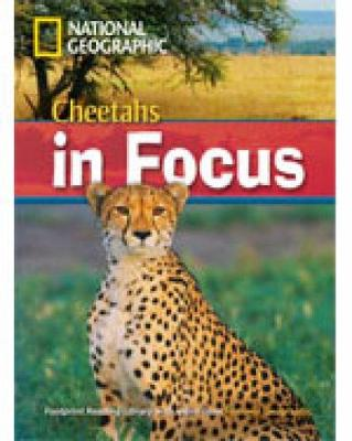 Cheetahs in Focus - Waring, Rob, and National Geographic