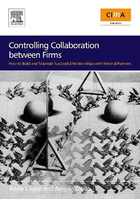 Controlling Collaboration Between Firms: How to Build and Maintain Successful Relationships with External Partners - Ditillo, Angelo, and Caglio, Ariela