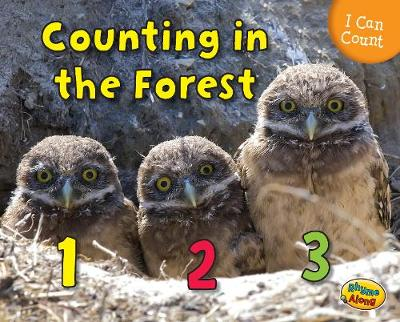 Counting in the Forest - Rissman, Rebecca