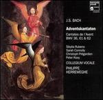 J.S. Bach: Adventskantaten, BWV 36, 61 & 62