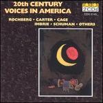 20th Century Voices in America