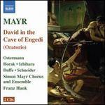 Mayr: David in spelunca Engaddi