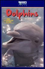 The Ultimate Guide: Dolphins