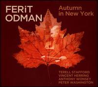 Autumn In New York - Ferit Odman