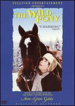The Wild Pony