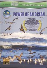 Equator: Power of an Ocean