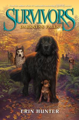 Darkness Falls - Hunter, Erin