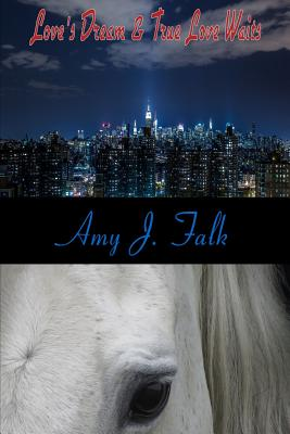 Davis Family Series Books 1-2 - Falk, Amy J