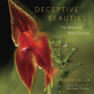Deceptive Beauties: The World of Wild Orchids - Ziegler, Christian, and Angier, Natalie (Foreword by), and Pollan, Michael (Introduction by)