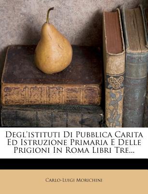 Degl'istituti Di Pubblica Carita Ed Istruzione Primaria E Delle Prigioni in Roma, Volume 2... - Morichini, Carlo Luigi