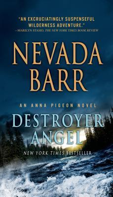Destroyer Angel - Barr, Nevada