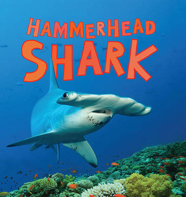 Discover Sharks: Hammerhead Shark - Bedoyere, Camilla de la